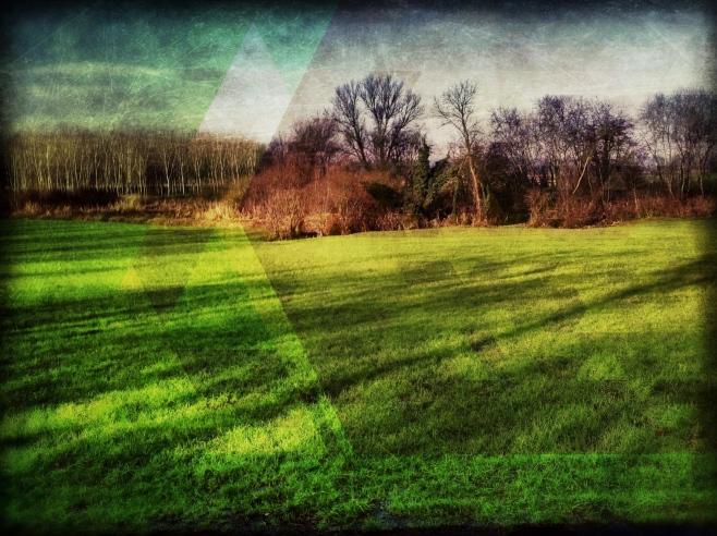 Secrets in the grass