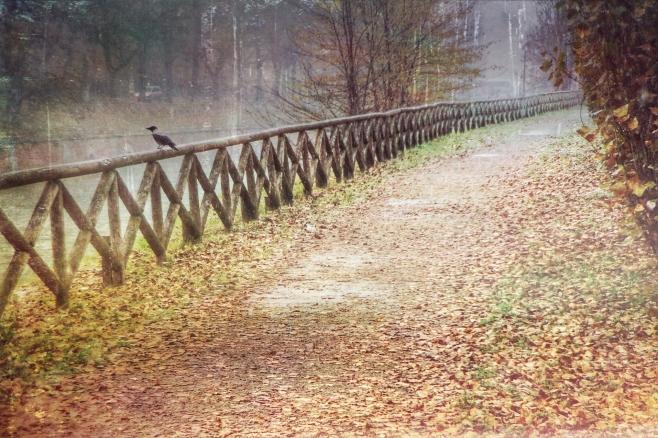 Autumn, the year's last, loveliest smile. (W. C. Bryant)